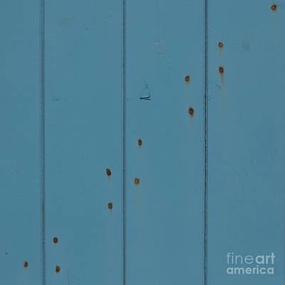 Photograph - 12 Rusty Nails In A Blue Door  by Wendy Wilton