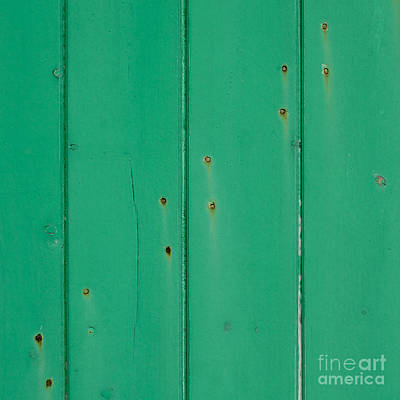 Photograph - 12 Rusty Nails On A Green Door by Wendy Wilton