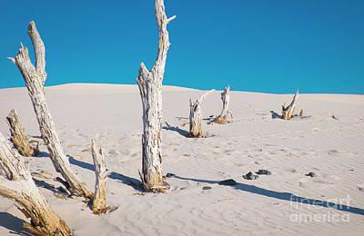 Photograph - Sardinia by Milena Boeva