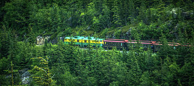 Photograph - Scenic Train From Skagway To White Pass Alaska by Alex Grichenko