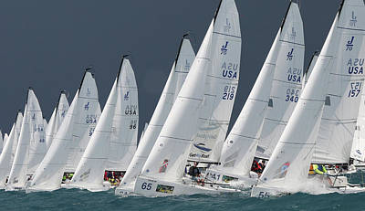 Photograph - J70 Lineup At Key West by Steven Lapkin