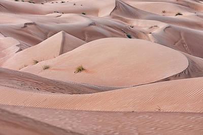 Wahiba Sands - Oman Print by Joana Kruse