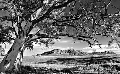 Pound Photograph - Wilpena Pound  by Bill  Robinson