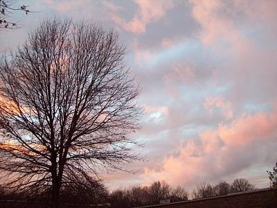 Photograph - 1211 Skies by Robin Coaker