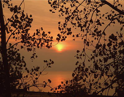 Photograph - 126603 Sunset On Lake Michigan by Ed Cooper Photography