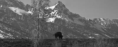 Photograph - Wyoming by Avril Christophe