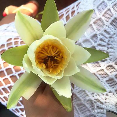 Pyrography -  Flower by Yury Bashkin