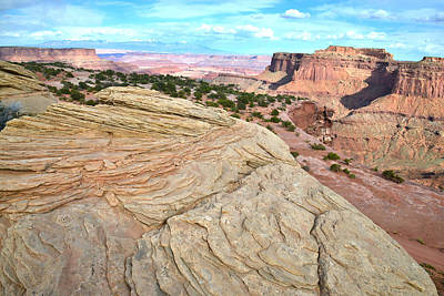 Photograph - Grand View Point by Ray Mathis