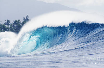 Perfect Wave At Pipeline Art Print