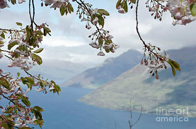 Photograph - Queenstown New Zealand. Remarkable Ranges And Lake Wakatipu. by Yurix Sardinelly