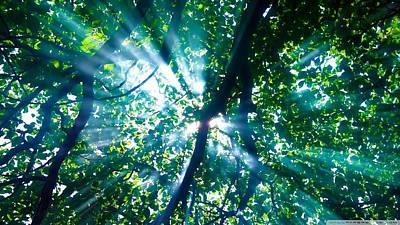 Bright Digital Art - Sunbeam by Super Lovely