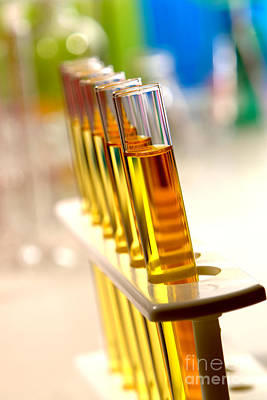 Rack Photograph - Test Tubes In Science Research Lab by Olivier Le Queinec