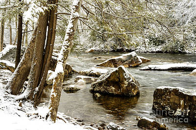 Winter Along Cranberry River Art Print