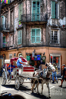 Photograph - 1342 New Orleans Horse And Buggy by Steve Sturgill