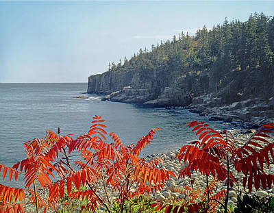 Photograph - 136211 Otter Cliffs In Maine  by Ed  Cooper Photography