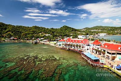 Photograph - 1384 Roatan Honduras by Steve Sturgill