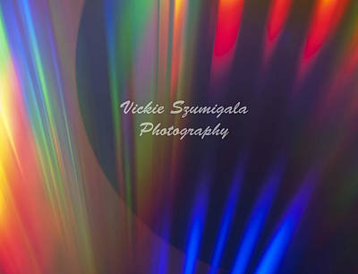 Photograph - 13x17 by Vickie Szumigala