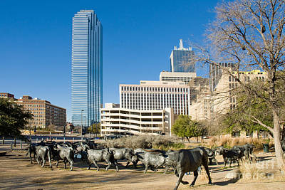 Metroplex Office Building Photograph - Dallas Texas by Anthony Totah