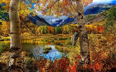 Yellow Digital Art - Fall by Super Lovely