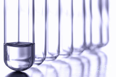 Test Tubes Photograph - Laboratory Test Tubes In Science Research Lab by Olivier Le Queinec