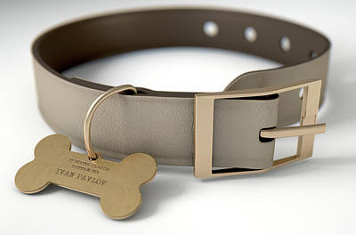 Canine Digital Art - Leather Collar With Tag by Allan Swart