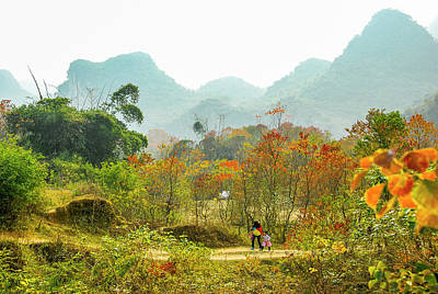 Photograph - The Colorful Autumn Scenery by Carl Ning