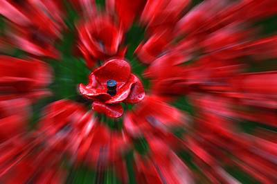 Photograph - Tower Of London Poppies by Chris Day