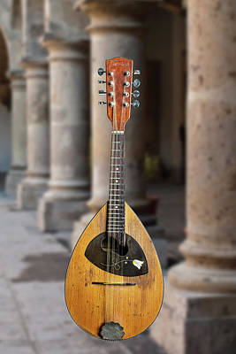 Photograph - 14.1845 Framus Mandolin by M K  Miller