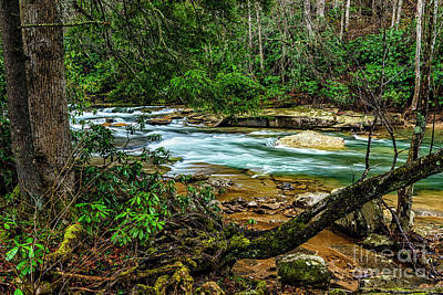 Art Print featuring the photograph Back Fork Of Elk River by Thomas R Fletcher