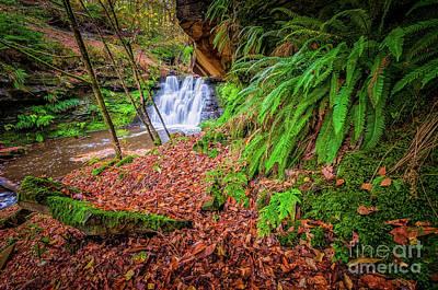 Photograph - Goit Stock Waterfall by Mariusz Talarek
