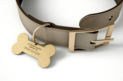 Tag Digital Art - Leather Collar With Tag by Allan Swart