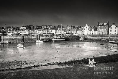 Animal Portraits - St Monans Harbour by Keith Thorburn LRPS EFIAP CPAGB