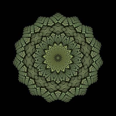 Digital Art - 15 Symmetry Celery Bulb by Doug Morgan