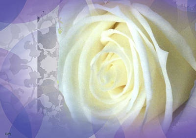 Wedding Rose Collection  Art Print by Debra     Vatalaro
