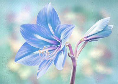 Digital Art - Amaryllis #2 by Bill Johnson