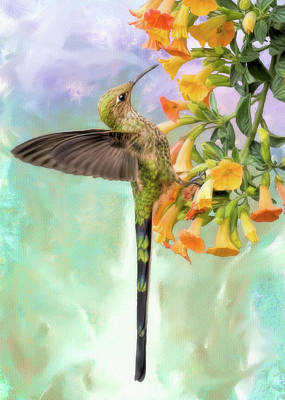 Digital Art - Black Tailed Trainbearer by Bill Johnson