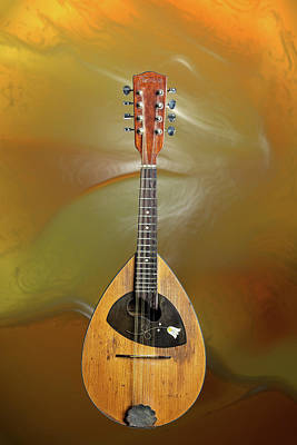 Photograph - 15.1845 Framus Mandolin by M K  Miller