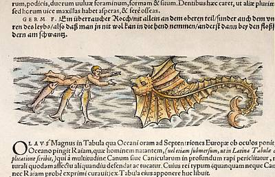 1554 Gesner Shark Attack On Man With Ray Art Print by Paul D Stewart