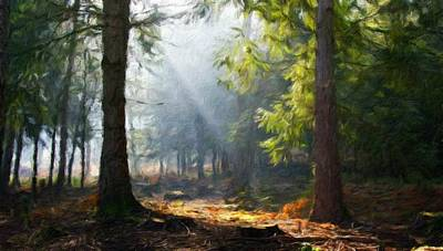 Nature Painting - Nature Landscape Pictures by Margaret J Rocha