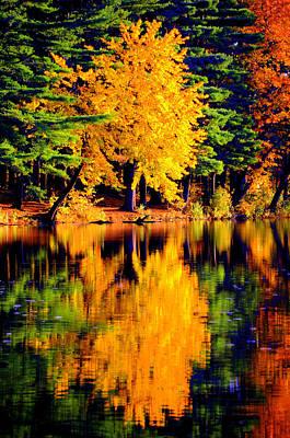 Autumn Colors Art Print by Aron Chervin