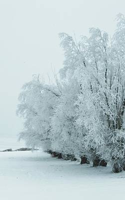 Pittsburgh According To Ron Magnes - Hoar frost by Kylie Jo Greshik