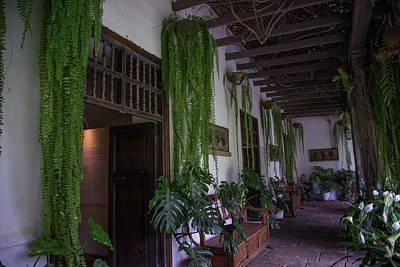 Digital Art - Museo Larco Gardens by Carol Ailles