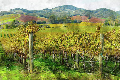 Soil Digital Art - Napa Valley California Vineyard by Brandon Bourdages