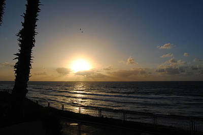 Photograph - Sunset At Jaffa Beach by Isam Awad