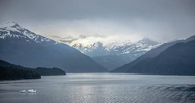 Photograph - Tracy Arm Fjord Scenery In June In Alaska by Alex Grichenko