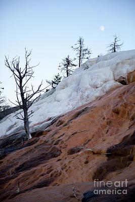 Photograph - Yellowstone National Park by Kati Finell