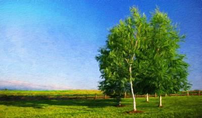 Oil Painting - Nature Art Landscape by Margaret J Rocha