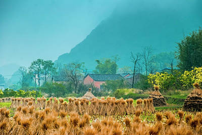 Photograph - Beautiful Countryside Scenery In Autumn by Carl Ning