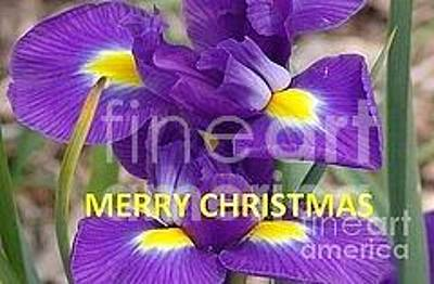 Photograph - Christmas Card by Rod Ismay