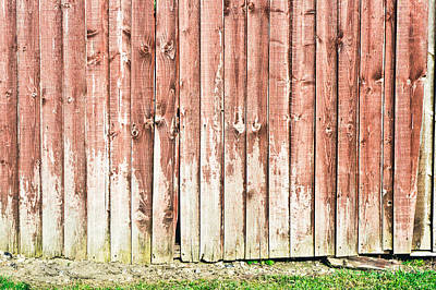Fence Panels Art Print by Tom Gowanlock